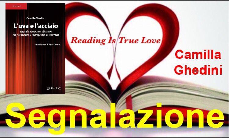 """Segnalazione """"L'uva e  l'acciaio"""" di Camilla Ghedini"""